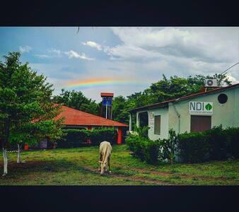 Amazing Home on Ometepe - Moyogalpa
