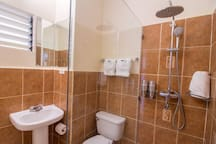 Newly renovated bathroom with walk-in shower and rainfall shower-head
