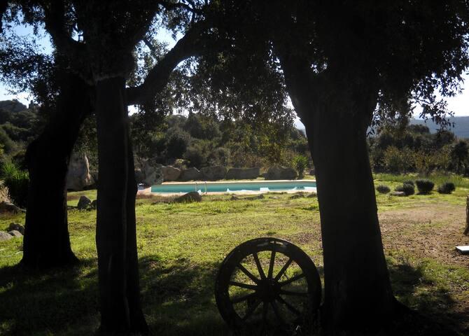 Landhausvilla Balaiana - Luogosanto