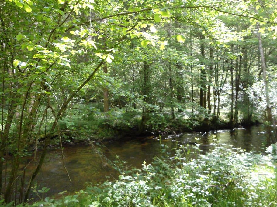 La rivière à quelques pas