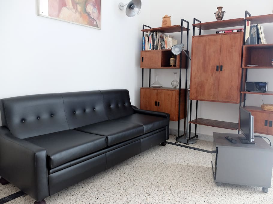 Living with sofa and TV