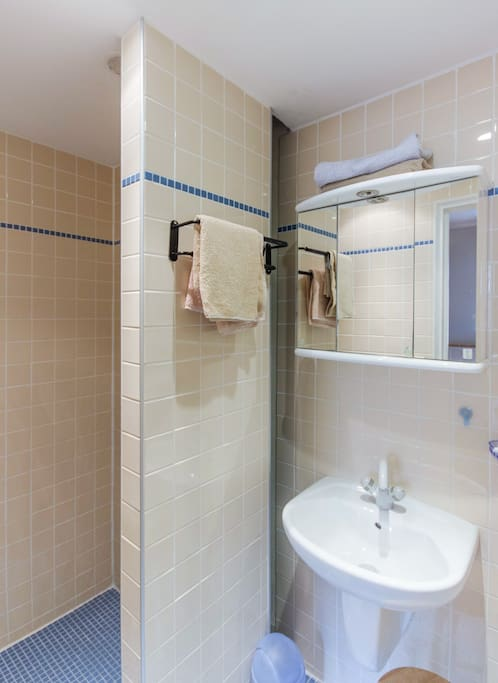 bath with shower, sink and separated WC