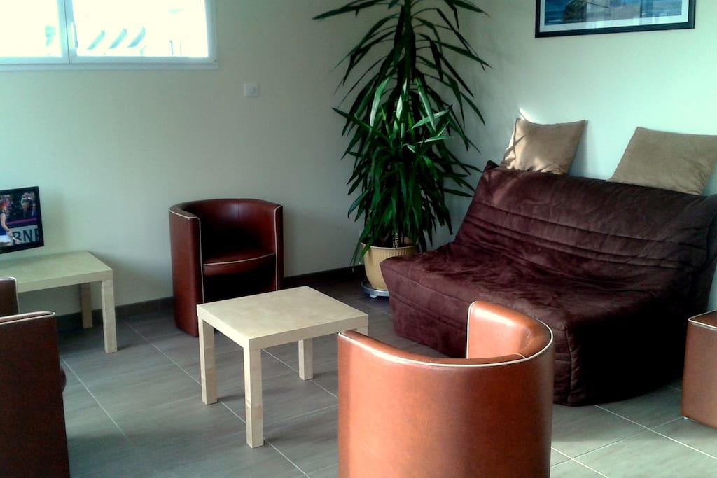 un salon lumineux et confortable avec un canapé BZ (couchage pour 2 personnes)