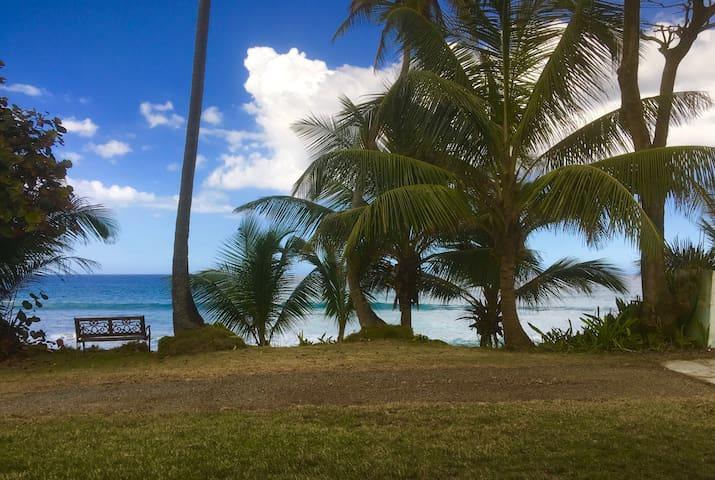 Beachfront Cozy Apt  Rincon/Aguada - Aguada - Haus