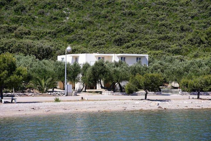 Studio flat near beach Drače, Pelješac (AS-4529-b) - Drače - Andre