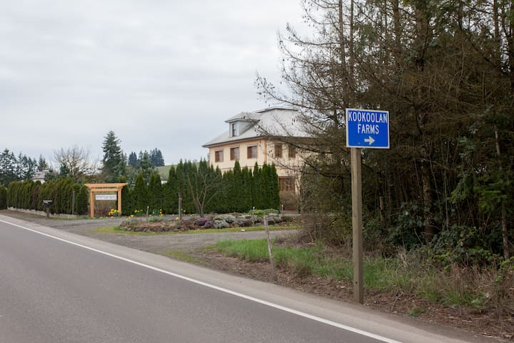 We are easy to find:  On the Sip47 wine route, Highway 47, between Carlton and Yamhill.  Our signage makes our driveway easy to find!