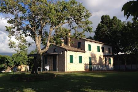 In collina vista mare di Senigallia - Monte San Vito - Villa
