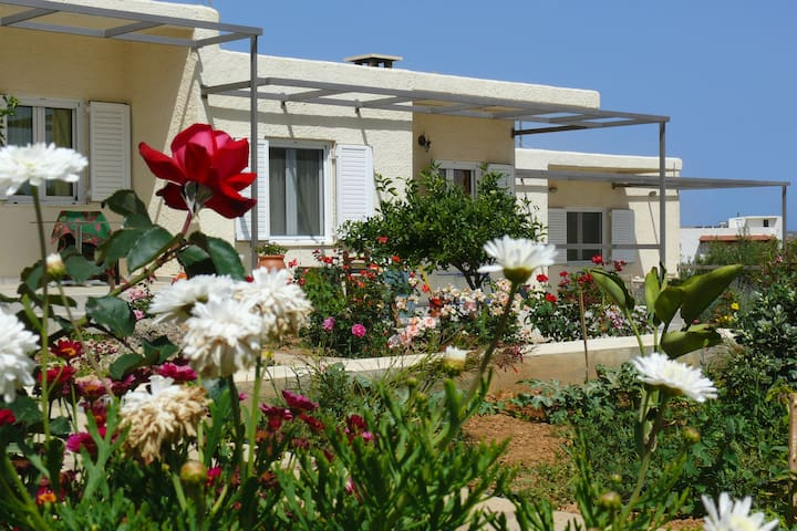 Countryside apartment - Sitia