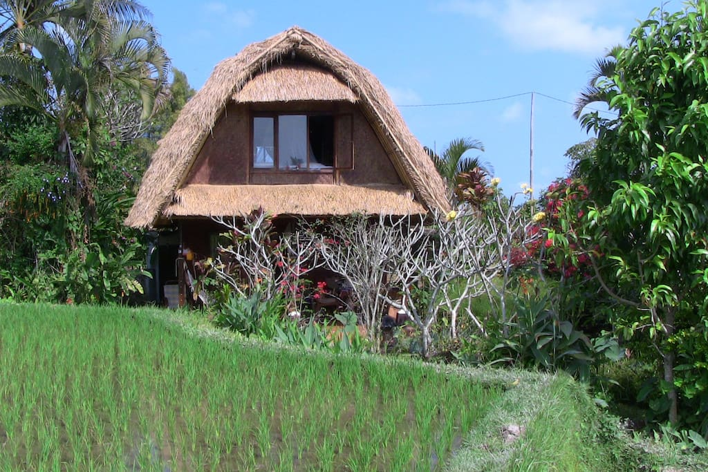 Traditionelles haus in top lage h user zur miete in ubud for Traditionelles haus bali