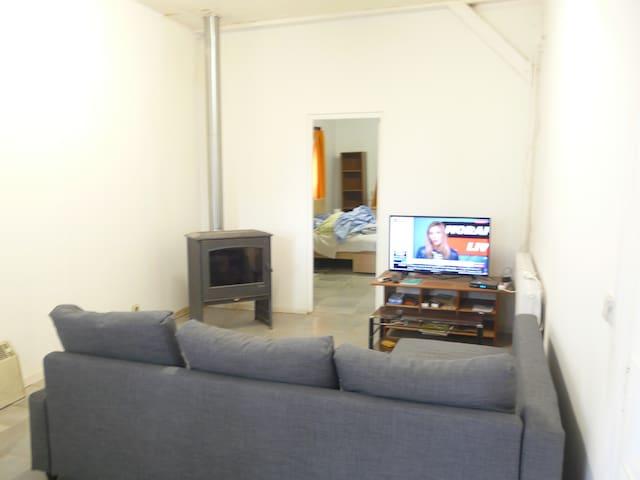 le salon avec le canapé lit l télévision et le poêle