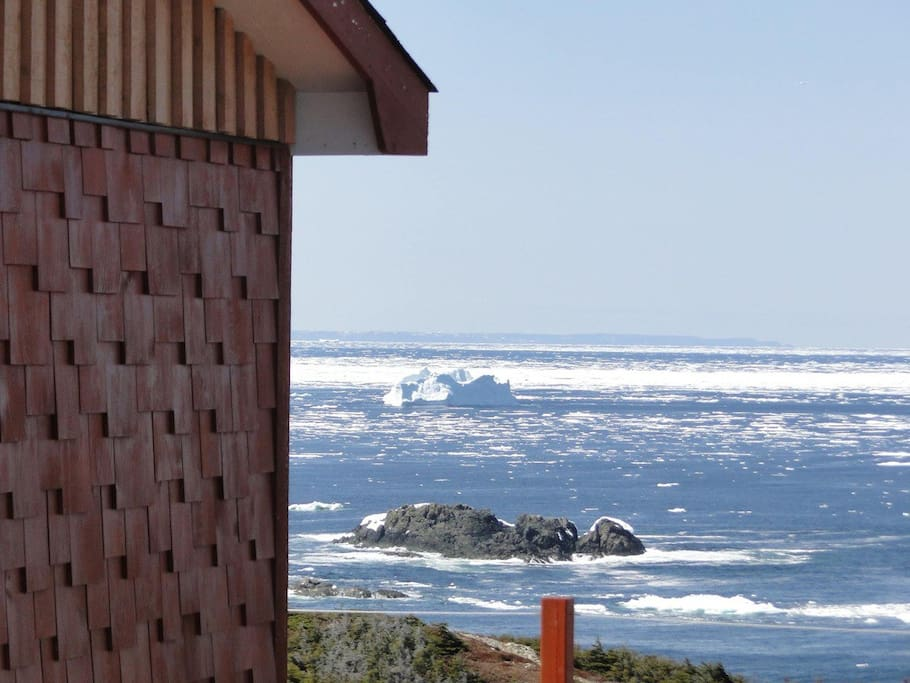 Icebergs, Whales and ever changing Ocean Views
