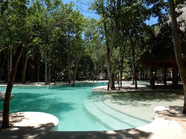 INCREÍBLE APTM Pto Morelos Cancun apt CENOTES