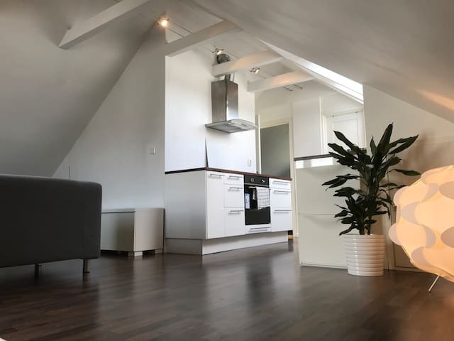 Fully equipped loft with private entrance