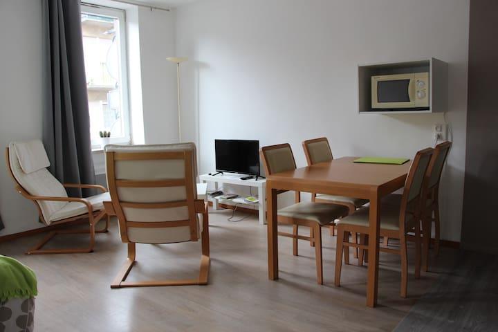 Coin salon et espace repas