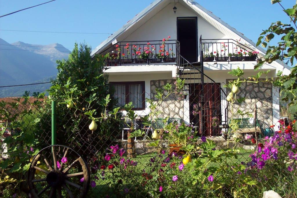 Villa gulab suite degli ospiti in affitto a gorno srpci for Piani casa degli ospiti