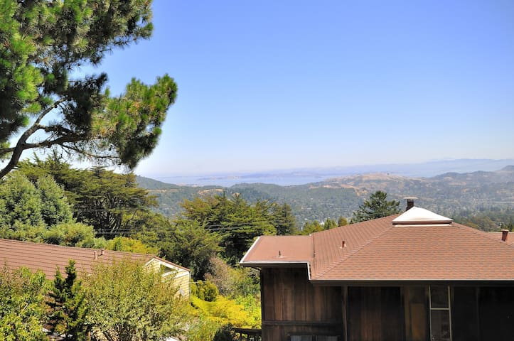 Mountain Top Studio Cottage w/Bay, Ocean Views - Mill Valley - Cabin