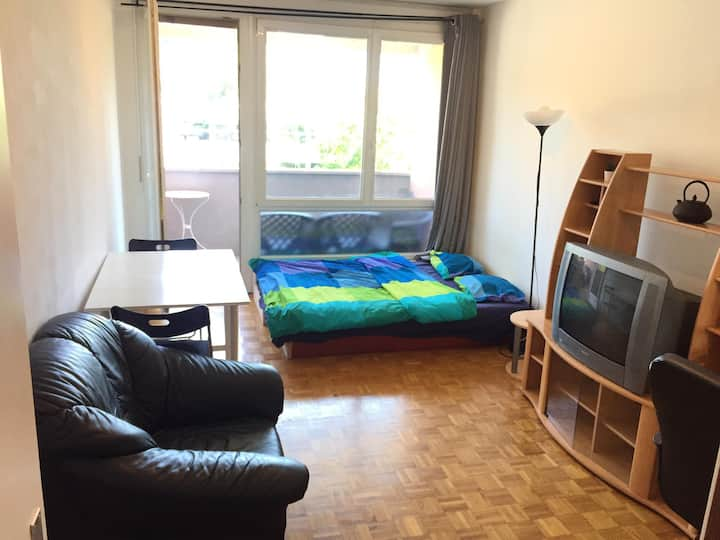 Furnished studio in Plainpalais