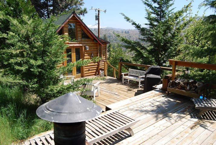 Cute, cozy cabin away from it all - Cedar Glen  - Huis
