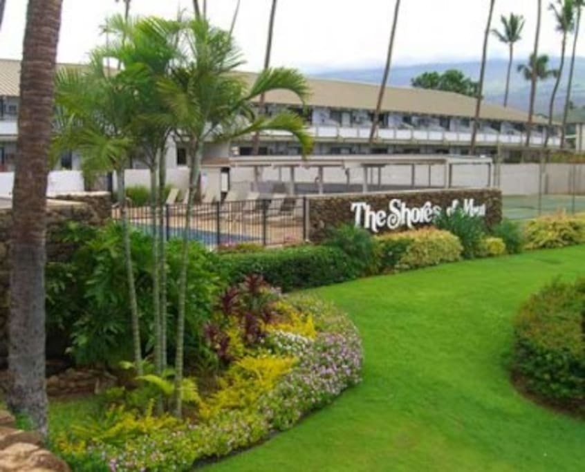 After a quick 20-minute drive from the Kahului airport (& Costco) you can park just steps from your front door. Out the sliding door and take a short stroll across a grassy lawn to the pool.