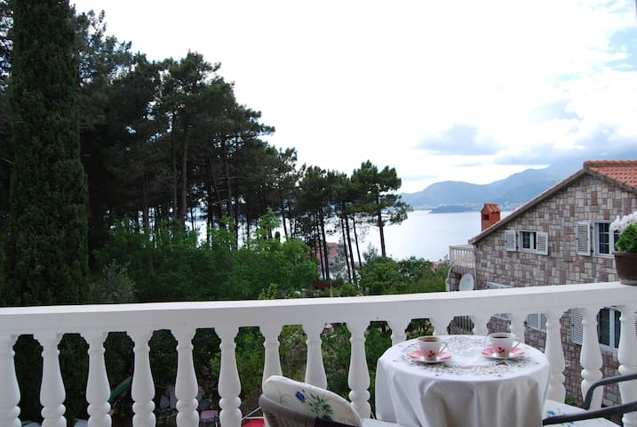 Apartment Crvena Glavica - Orchid - Sveti Stefan - Casa