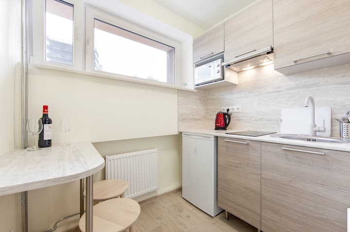 Renovated apartment in city centre