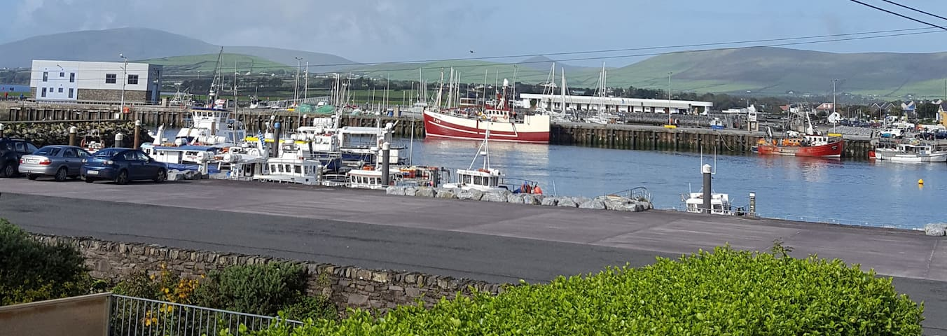 Harbour View Dingle Town  Centre with parking