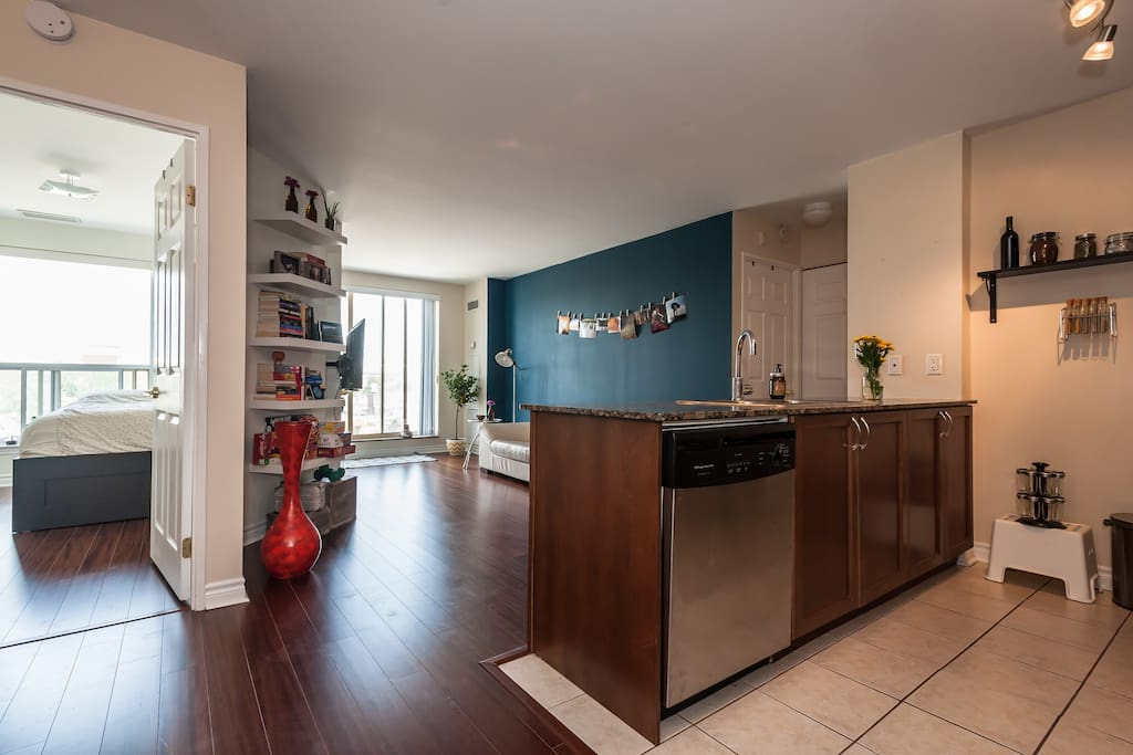 Bright 2 bedroom condo with amazing view apartments for - 2 bedroom apartments for rent toronto ...