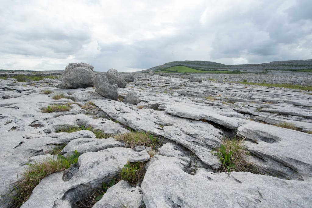Limestone and Glacial Erratics