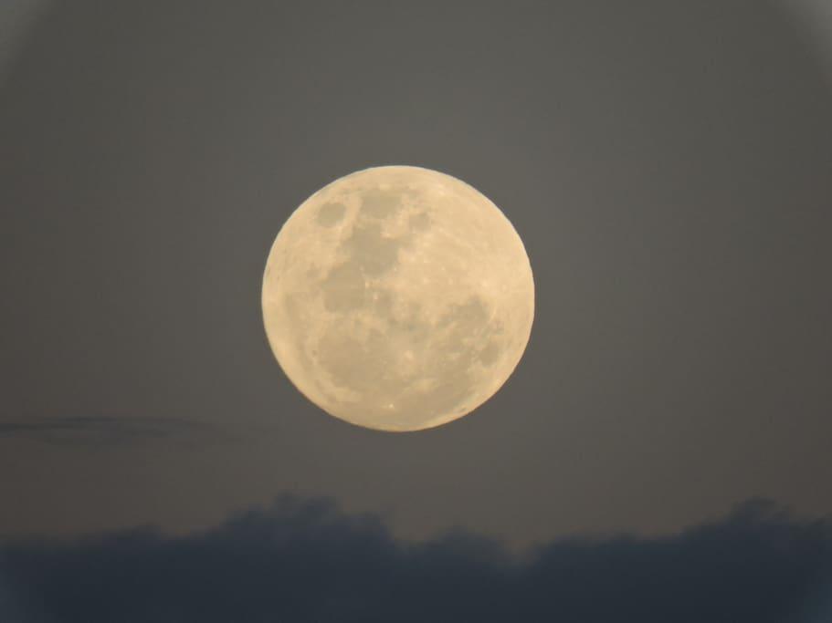 A lua rege a ilha! O nascimento no mar é um espetáculo.