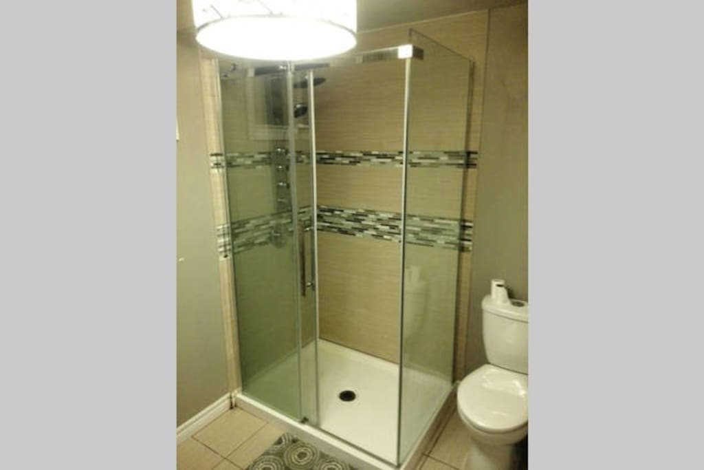 basement washroom with fancy shower with bodyjets