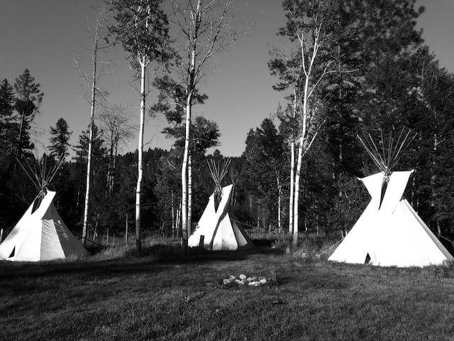 """""""Two Socks"""" Tipi in the Woods - 캘리스펠(Kalispell) - 티피(Tipi)"""