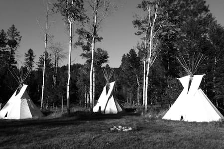 """Two Socks"" Tipi in the Woods - Kalispell"