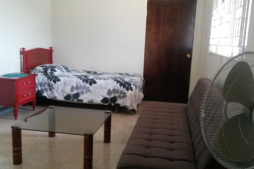 Room with one Single bed and a double sofa futon.