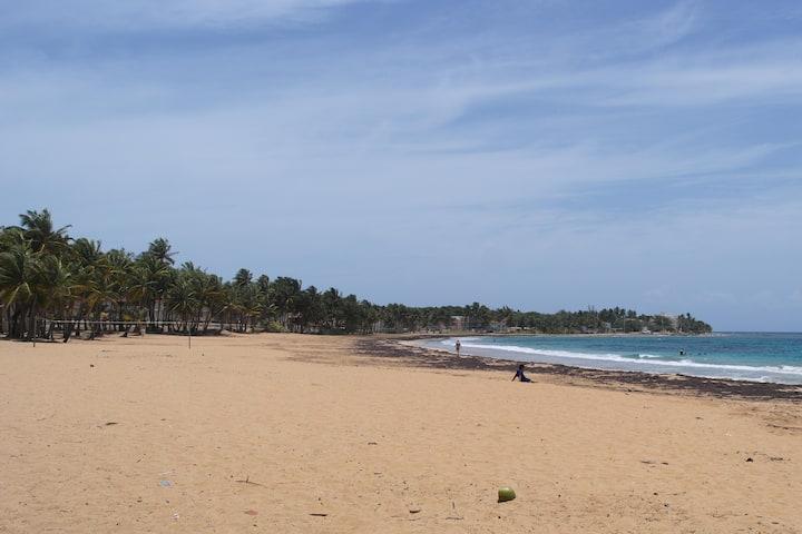 Beach Front Playa Azul 1005 M.C. Friendly One Love