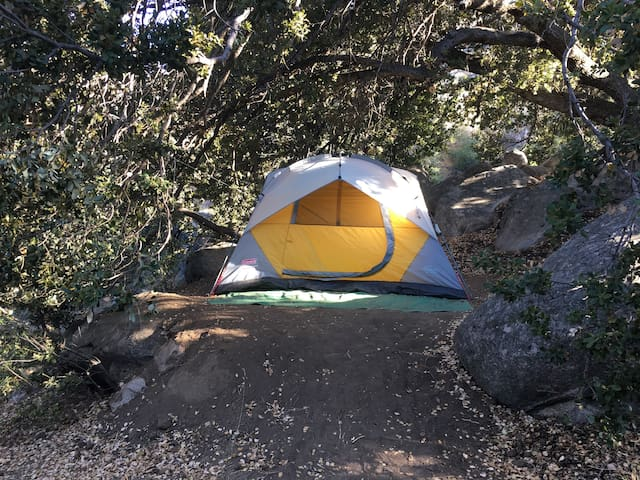"Spirit Walk ""Oak Tree"" Campsite  - Tent Included"