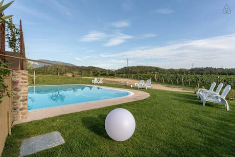 Ancient farmhouse with pool - Flora
