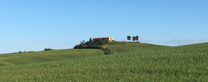 Relax tra colline e mare in un antico casolare
