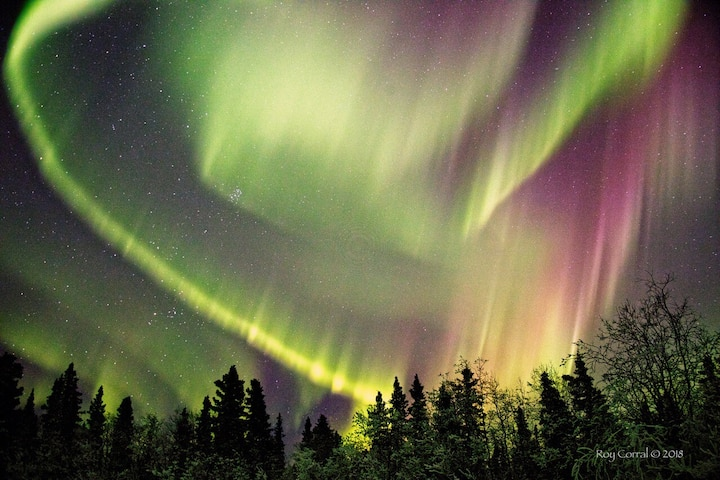 Alaska Range and Northern Lights View