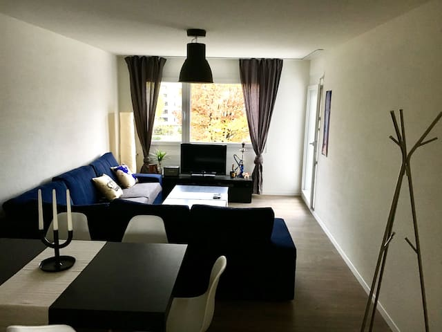 Modern attic 15 mins from HB 4-6 guests - Zürih