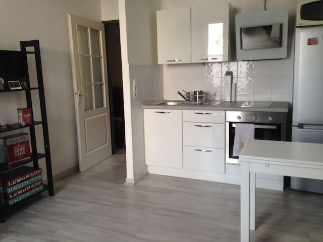 Jean Jaurès appartement idéalement situé - Lyon