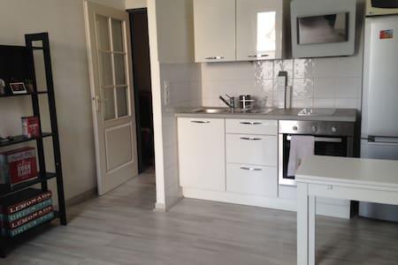 Jean Jaurès appartement idéalement situé - 里昂 - 公寓