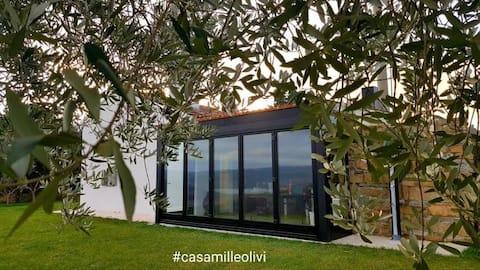 Casa Mille Olivi