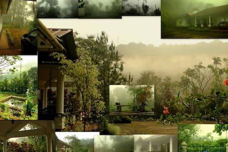 Tea & Coffee Estate Bungalow, Lakkidi