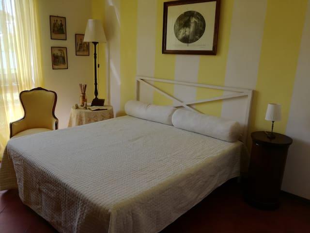 """Appartamento """"Lisanna""""  a Marina di Pietrasanta"""