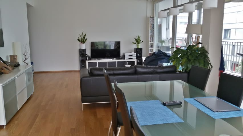 Room near trainstaition/center - Winterthur - Appartement