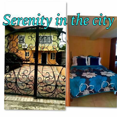 Serenity in the City - Kingston 8