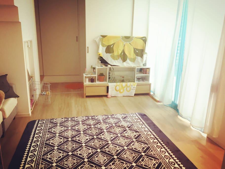 Living room.(KOTATSU coming soon on winter)
