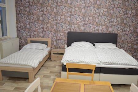 Luxní apartmá s venkovním bazénem - Šluknov - House
