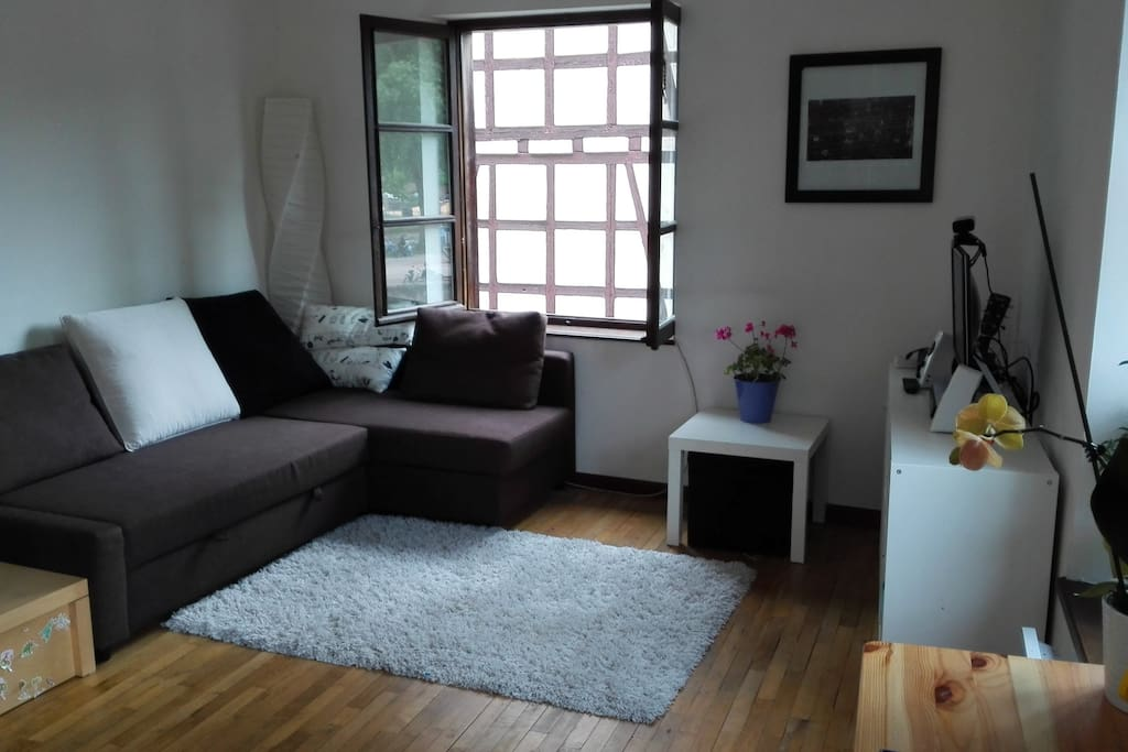 Living room, with a sofabed which sleeps 2