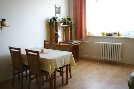 Clean and bright room in Hradec Králové - Hradec Králové